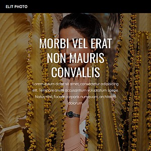 Mountain Horse Saddlery & Gift Shop