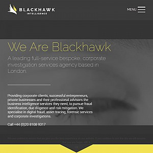 Blackhawk Investigations