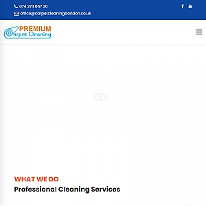Professional Carpet Cleaning Services London