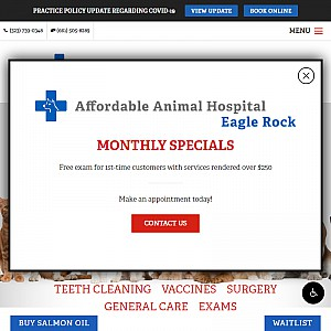 Veterinarian Los Angeles | Affordable Animal Hospital