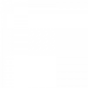 ECP Plastic Trays - Thermoformed trays