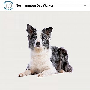Northampton Dog Walker
