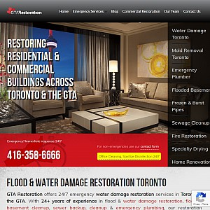 Water Damage Toronto Mold Removal